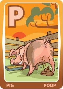 P Pig Poop