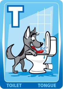 T Toilet